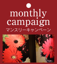 monthly campaign